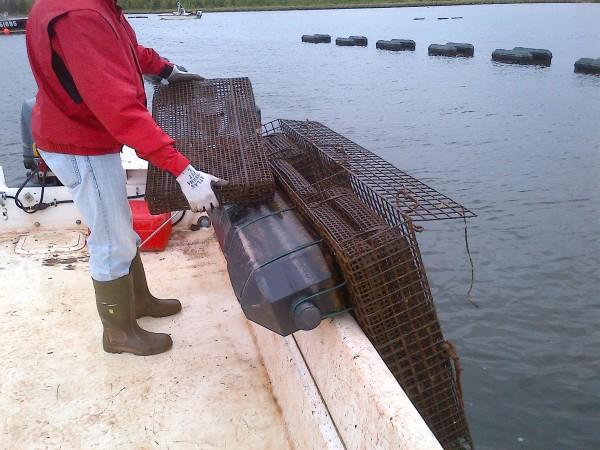 The Floating Rack Method
